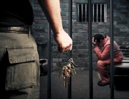 Theft Crime Defense Lawyer